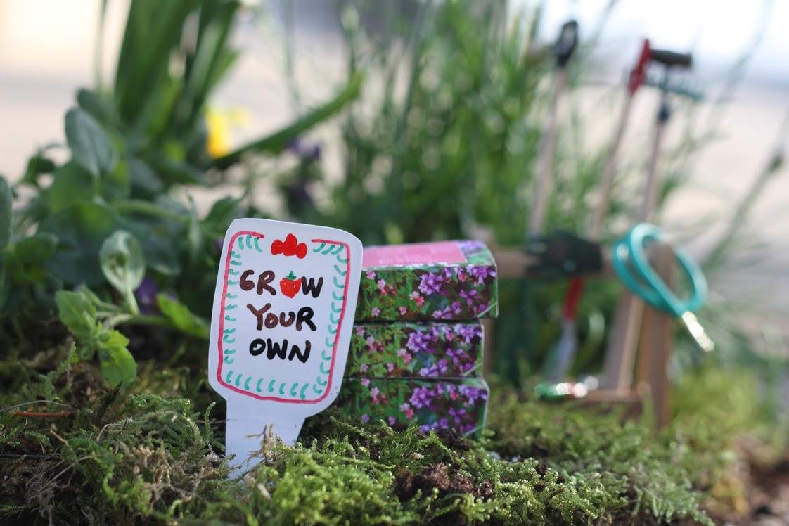 Heinz Tomato Ketchup 'Grow Your Own' Campaign