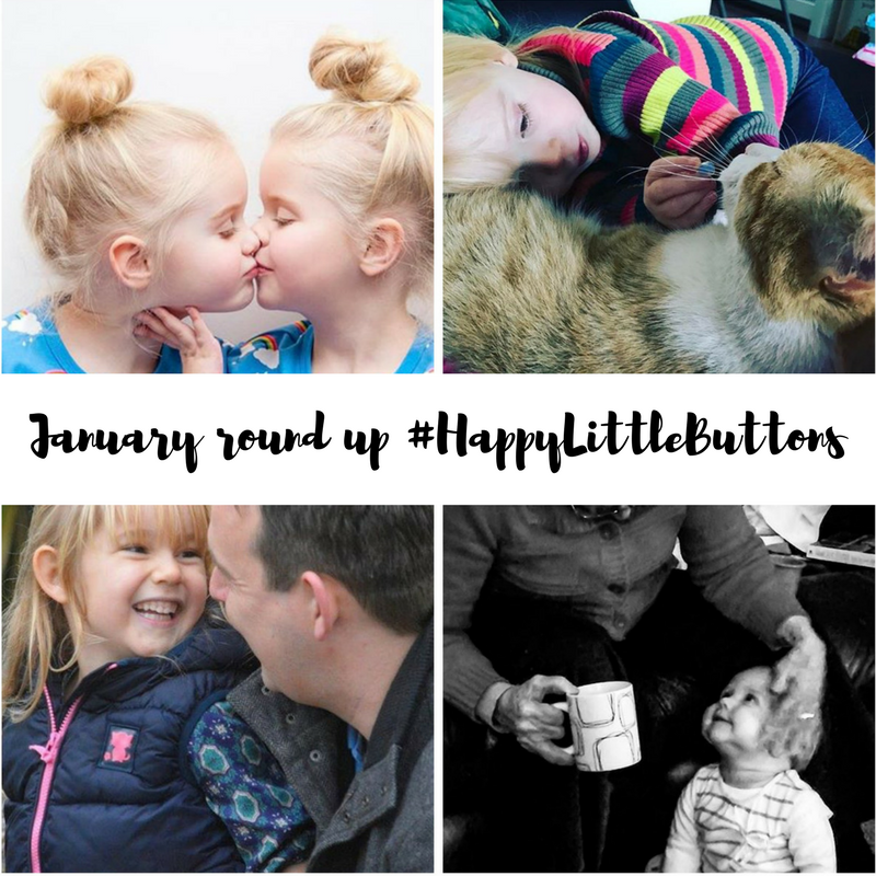 #HappyLittleButtons January 2017 Round Up