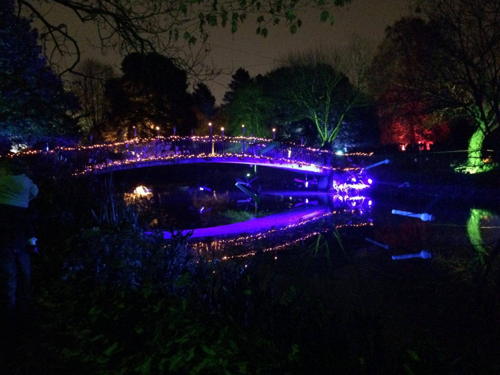 Syon Park Enchanted Woodland