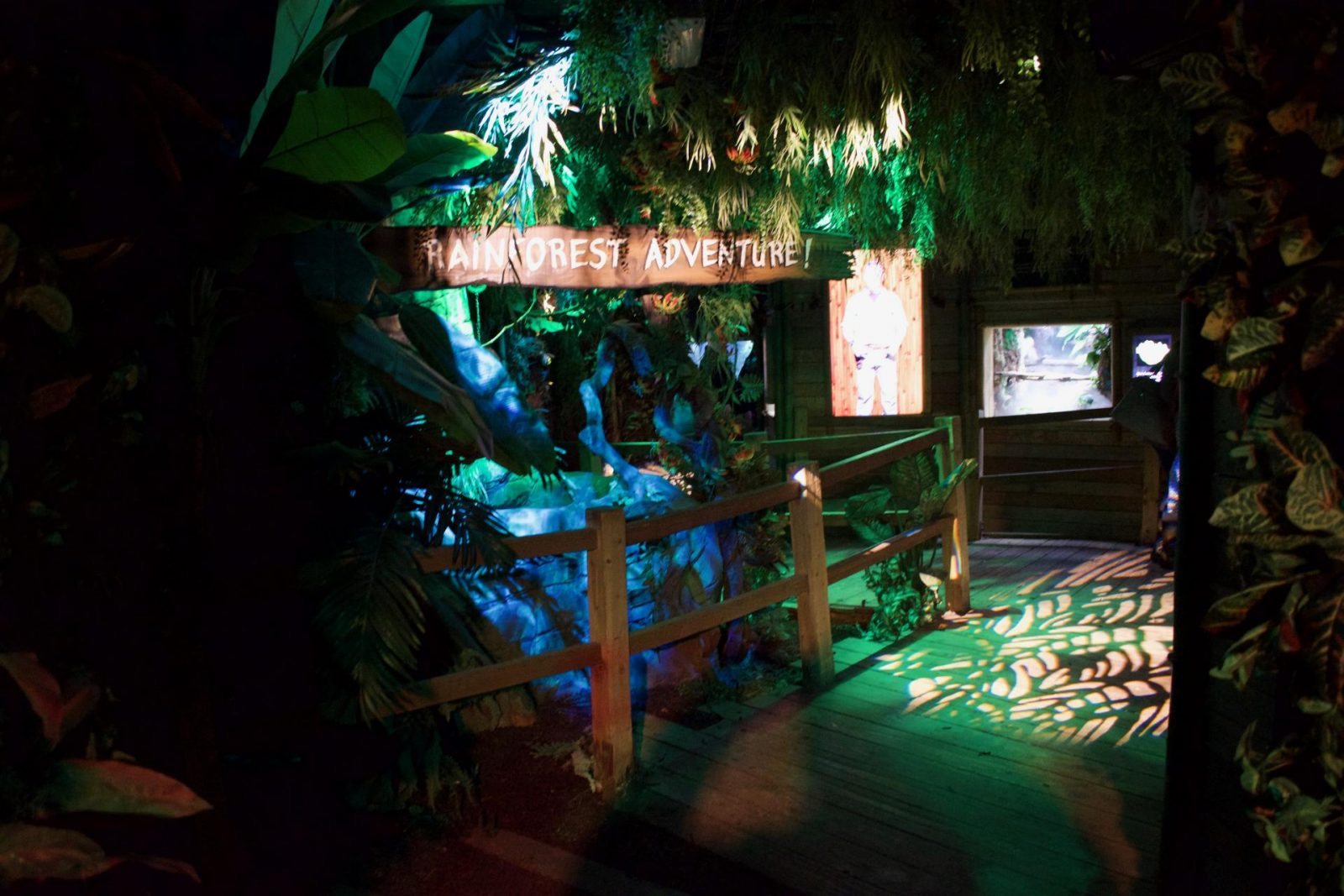 Rainforest adventure in Sea Life London