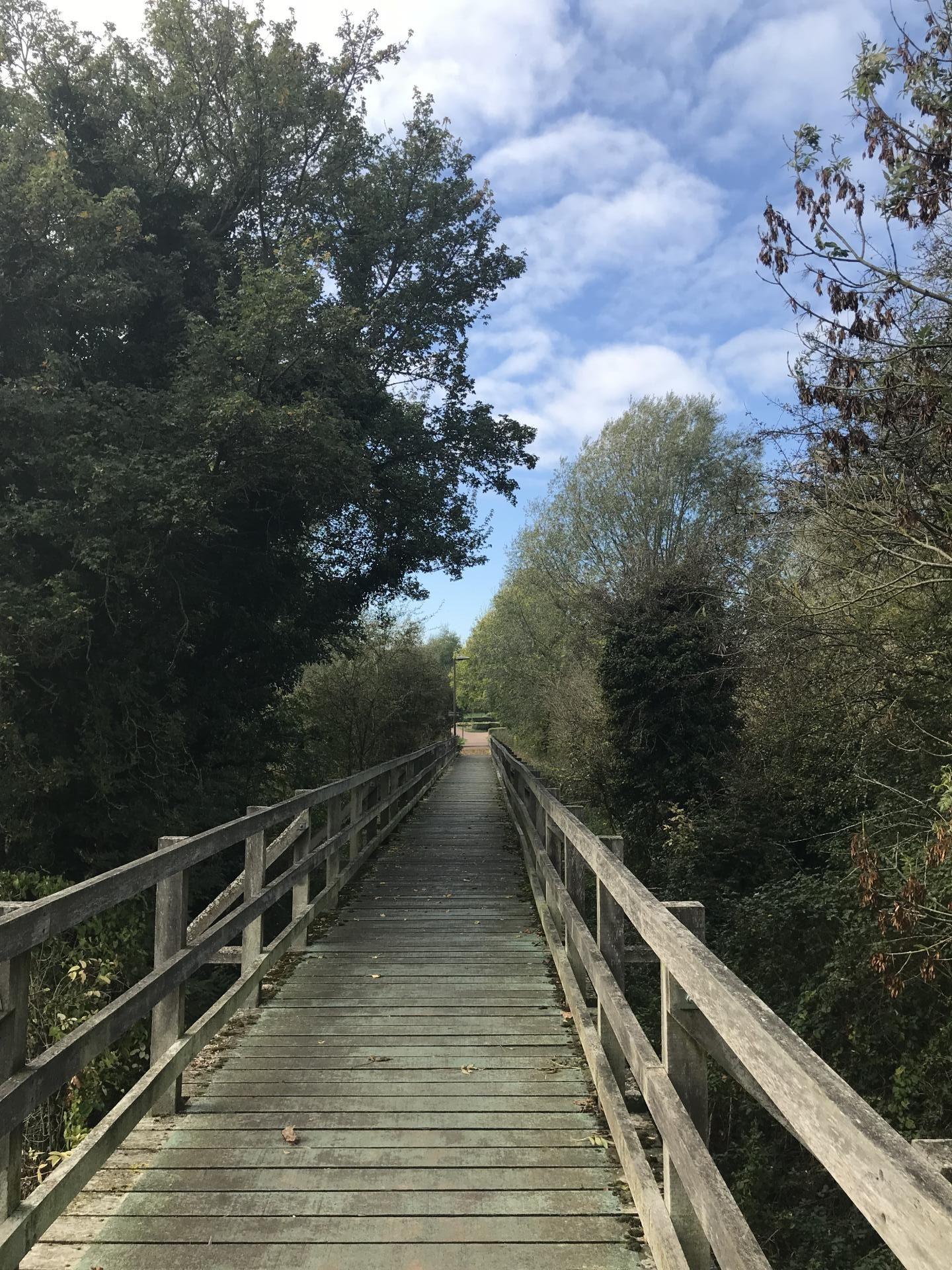 new paths