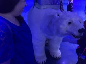 A Polar Adventure at SEA LIFE London