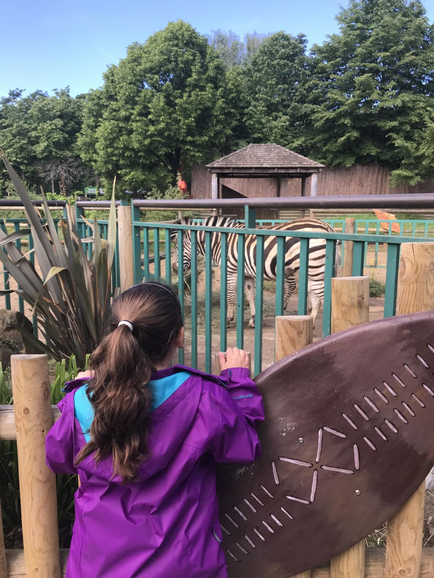 A family day out in Paradise Wildlife Park, Hertfordshire
